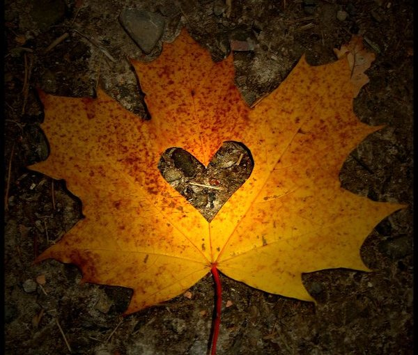 За что я люблю осень